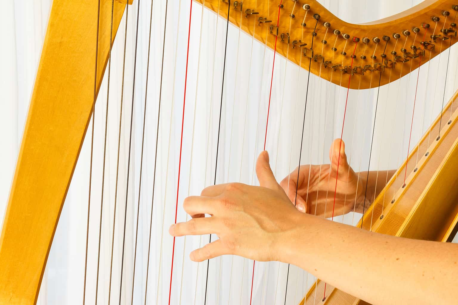 Playing the Celtic Harp